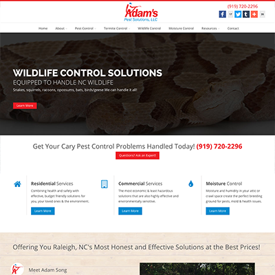 Adam's Pest Control Website Design
