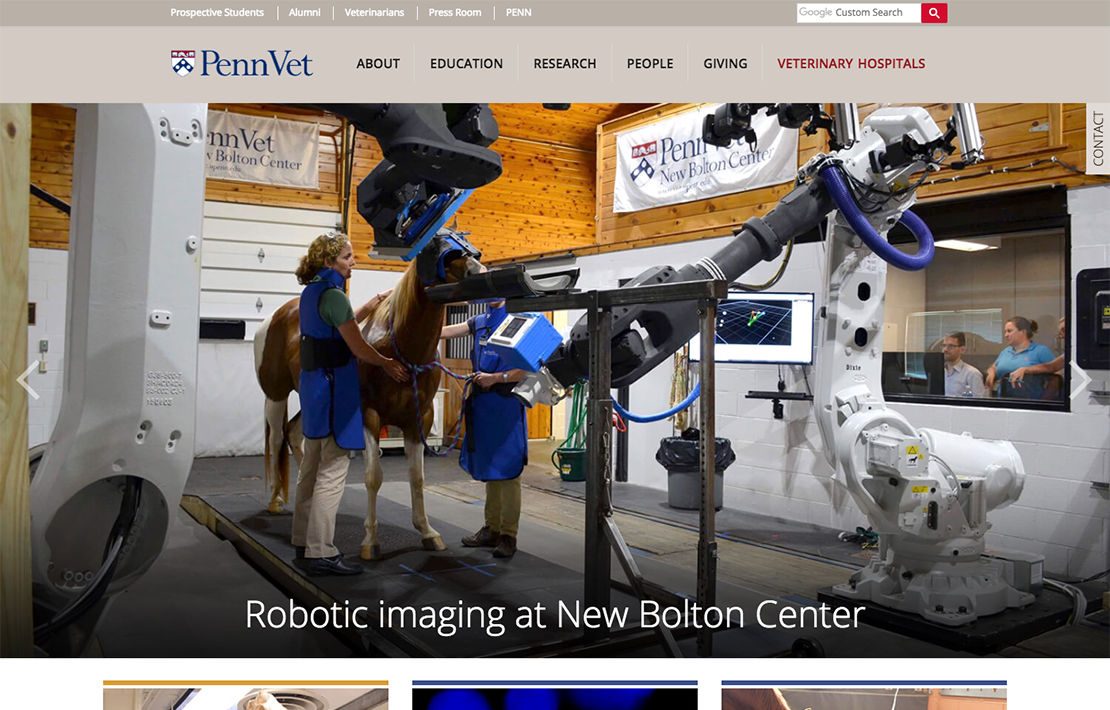 University of Pennsylvania, School of Veterinary Medicine Website Design